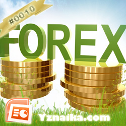Major forex centers
